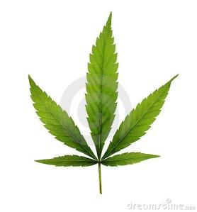 marijuana-11983879